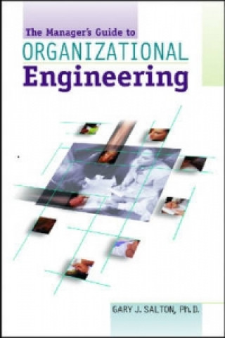 Manager's Pocket Guide to Organizational Engineering