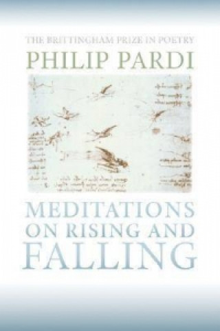 Meditations on Rising and Falling