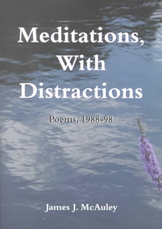 Meditations, with Distractions