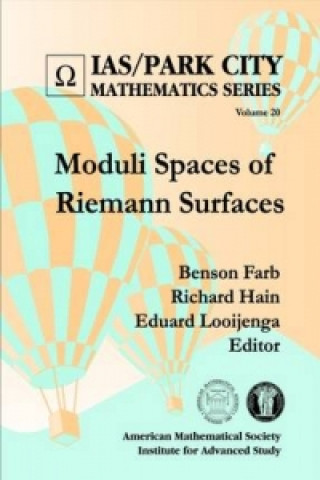 Moduli Spaces of Riemann Surfaces