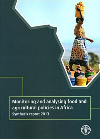 Monitoring and Analysing Food and Agricutural Policies in Africa