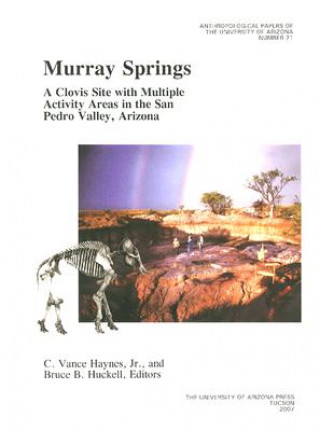 Murray Springs