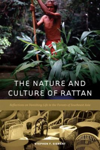 Nature and Culture of Rattan