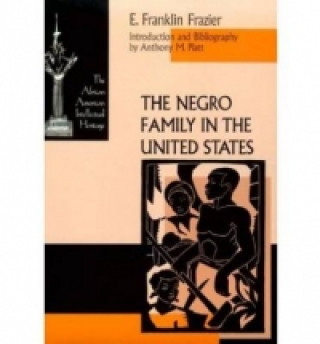 Negro Family in the United States