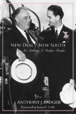 New Deal/New South