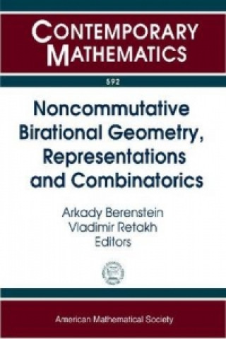 Noncommutative Birational Geometry, Representations and Combinatorics