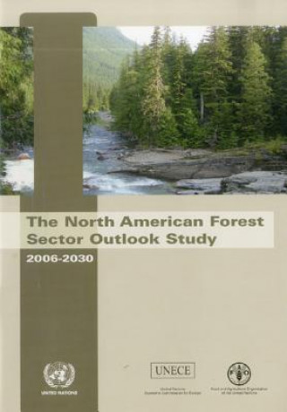 North American Forest Sector Outlook Study