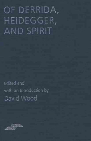 Of Derrida, Heidegger, and Spirit