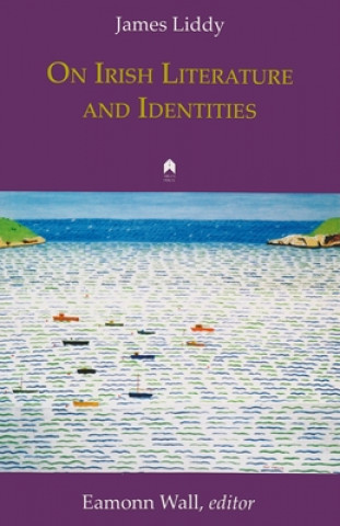 On Irish Literature and Identities