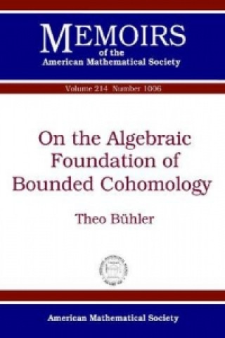 On the Algebraic Foundation of Bounded Cohomology