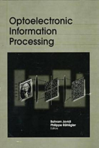 Optoelectronic Information Processing