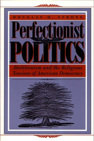 Perfectionist Politics