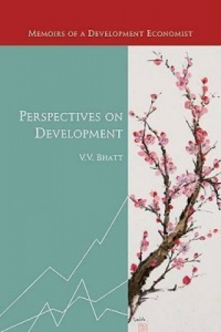 Perspectives on Development