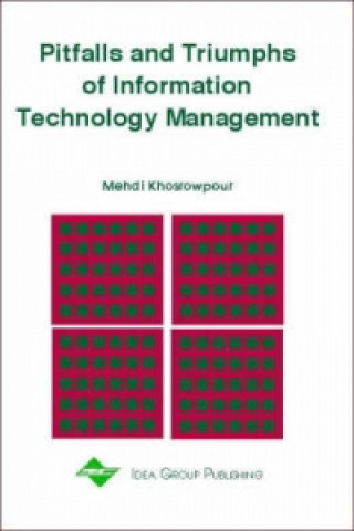 Pitfalls and Triumphs of Information Technology Management