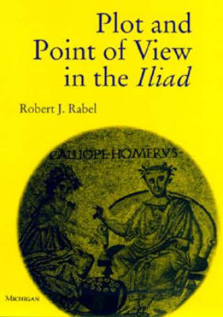 Plot and Point of View in the