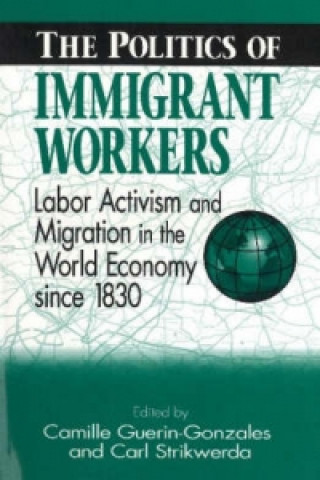 Politics of Immigrant Workers