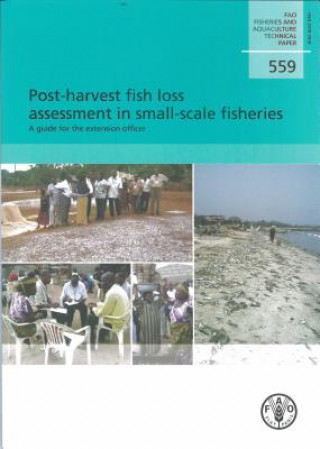 Post-harvest Fish Loss Assessment in Small-scale Fisheries