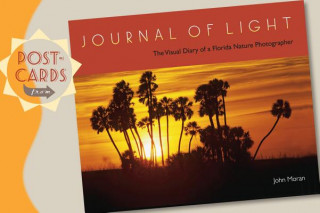 Postcards from Journal of Light