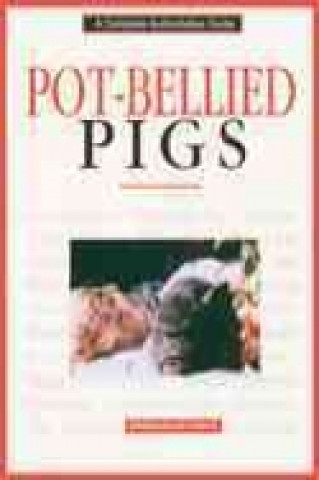 Pot-bellied Pigs