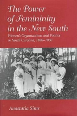 Power of Femininity in the New South
