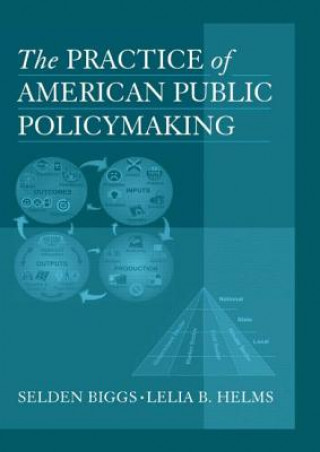 Practice of American Public Policymaking