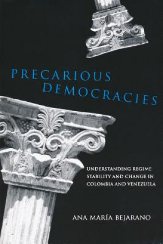 Precarious Democracies