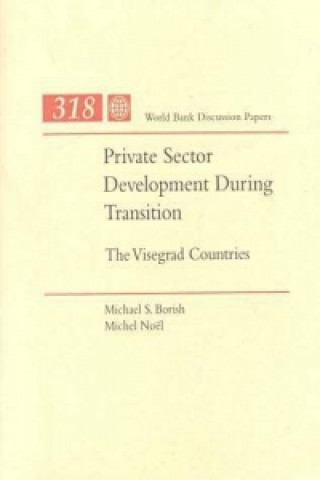 Private Sector Development during Transition
