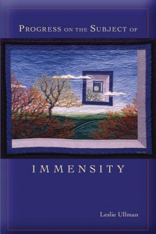 Progress on the Subject of Immensity