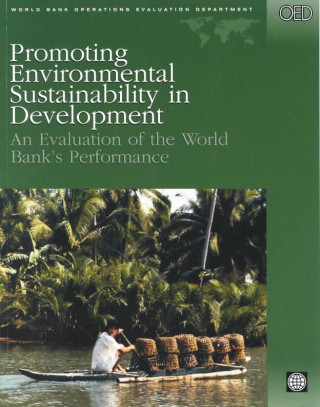 Promoting Environmental Sustainability in Development