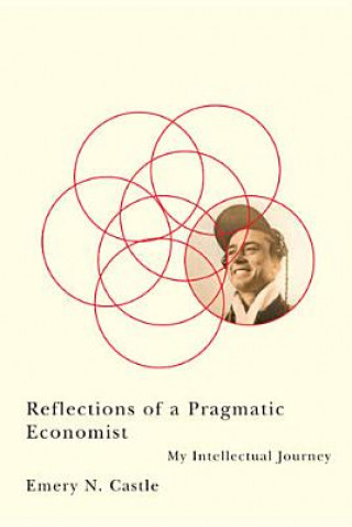 Reflections of a Pragmatic Economist