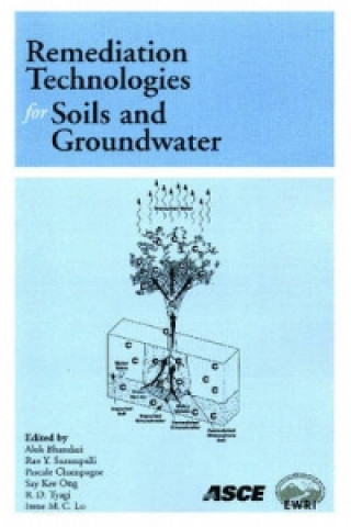 Remediation Technologies for Soils and Groundwater