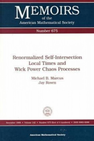 Renormalized Self-Intersection Local Times and Wick Power Chaos Processes