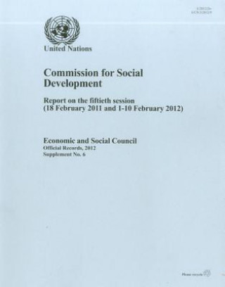 Report of the Commission for Social Development