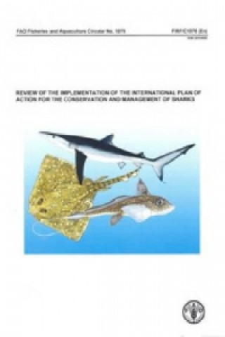 Review of the Implementation of the International Plan of Action for the Conservation and Management of Sharks