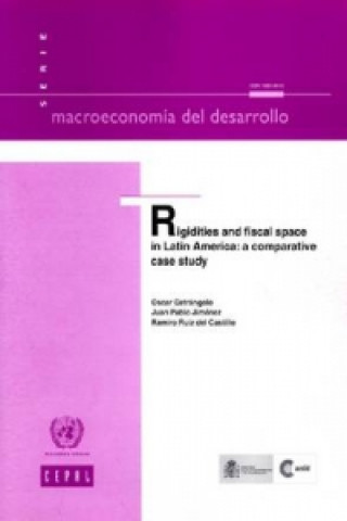 Rigidities and Fiscal Space in Latin America