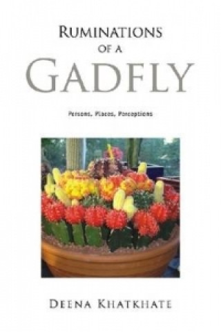 Ruminations of a Gadfly