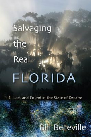 Salvaging the Real Florida