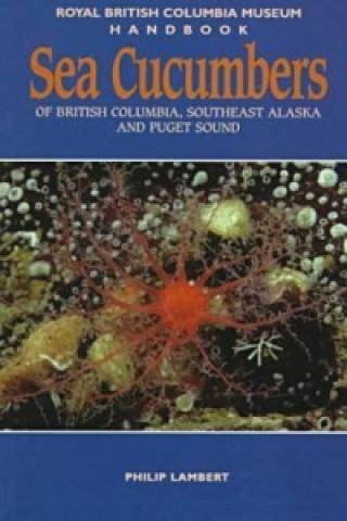 Sea Cucumbers of British Columbia