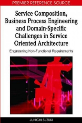Service Composition, Business Process Engineering and Domain-specific Challenges in Service Oriented Architecture