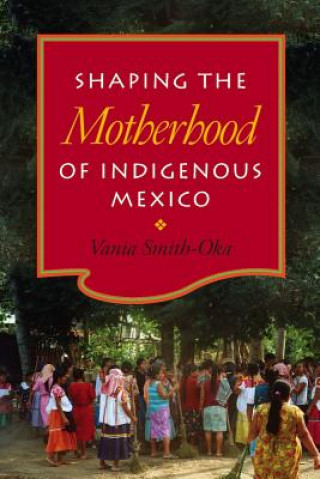 Shaping the Motherhood of Indigenous Mexico