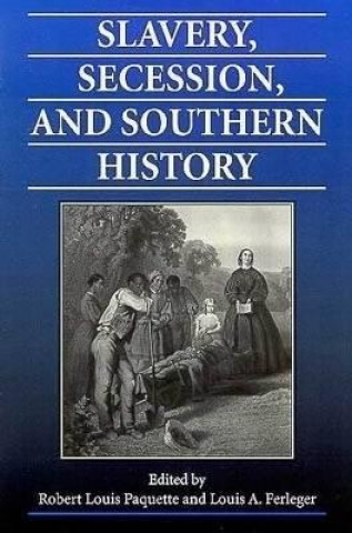 Slavery, Secession and Southern History