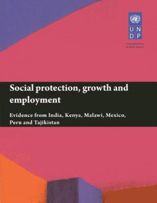 Social protection, growth and employment