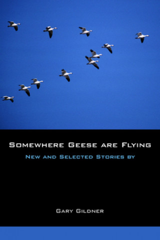 Somewhere Geese are Flying