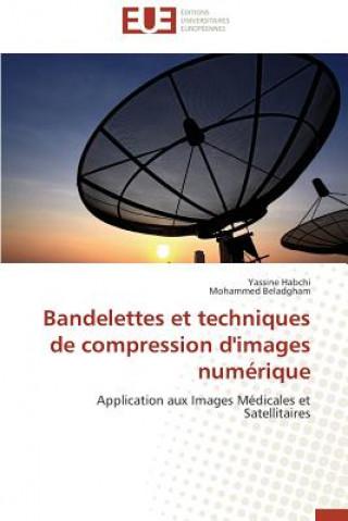 Bandelettes et techniques de compression d'images numérique