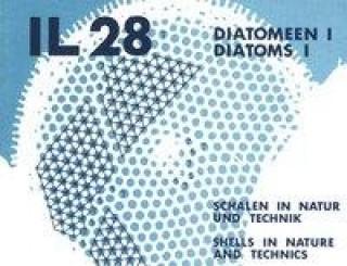 IL 28, Diatomeen, Schalen in Natur und Technik 1