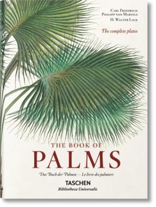 Carte von Martius. The Book of Palms H WALTER LACK