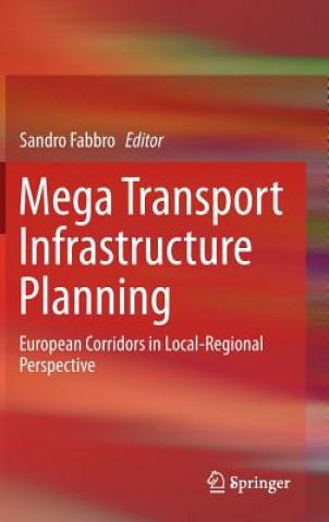 Carte Mega Transport Infrastructure Planning Sandro Fabbro