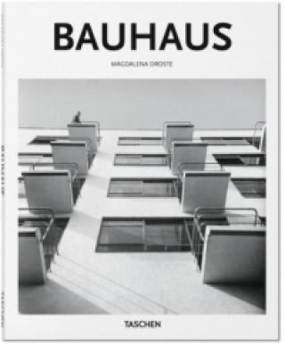 Kniha Bauhaus Magdalena Droste