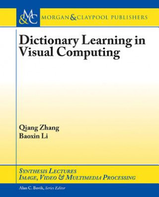 Dictionary Learning in Visual Computing