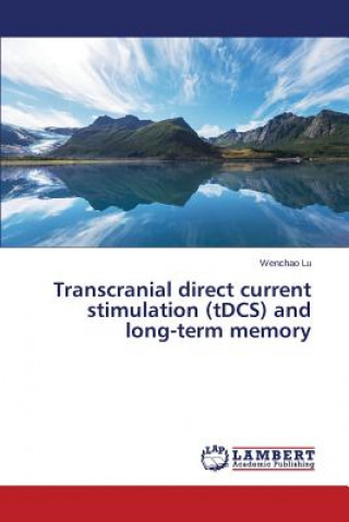 Transcranial direct current stimulation (tDCS) and long-term memory